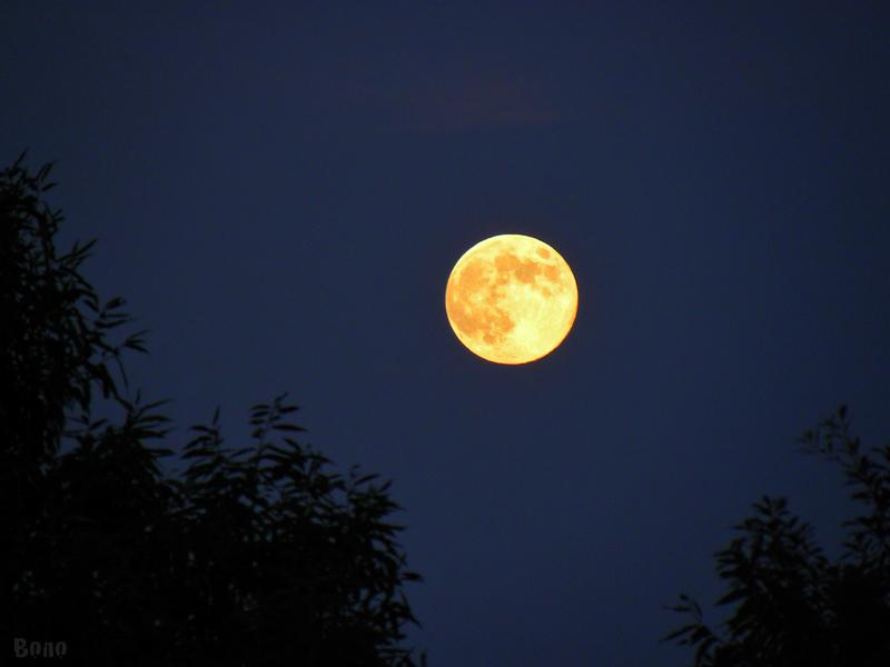 11-9-12-moon4.jpg