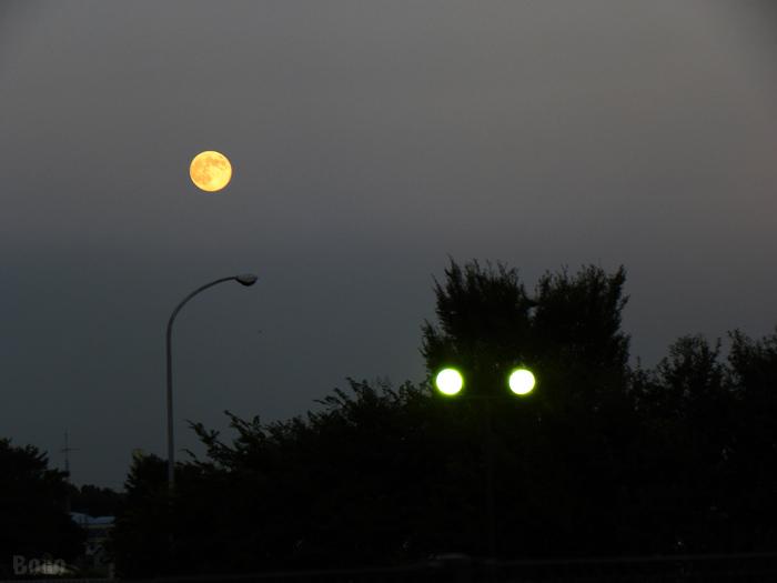 11-9-12-moon5.jpg