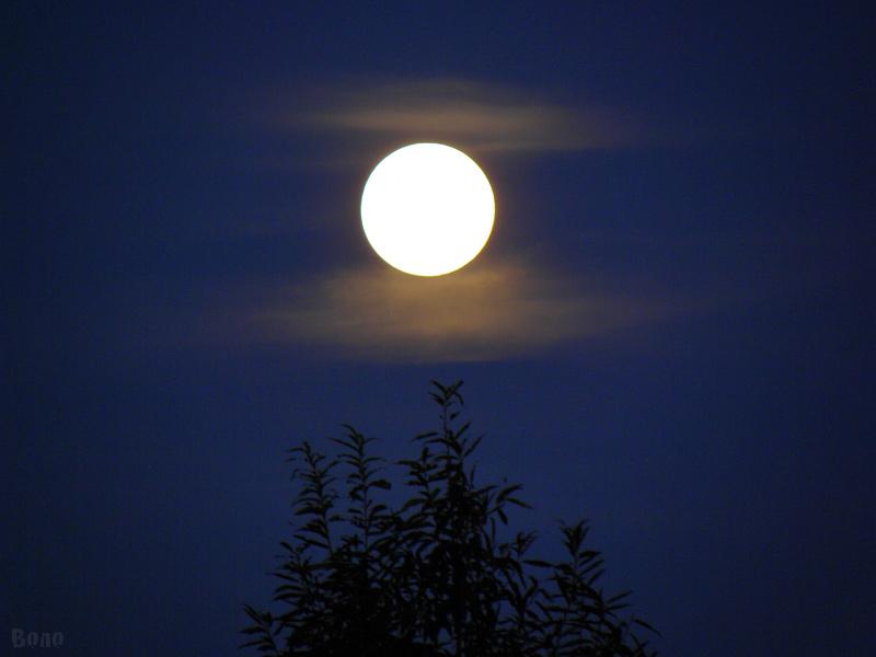 11-9-12-moon6.jpg