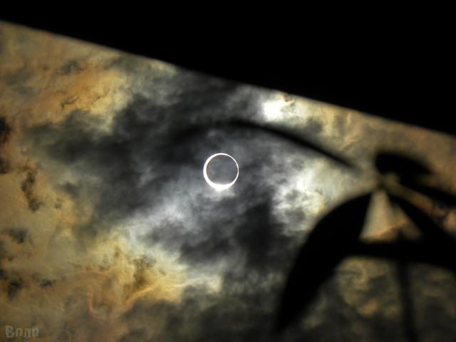 金環日食2012-d.jpg
