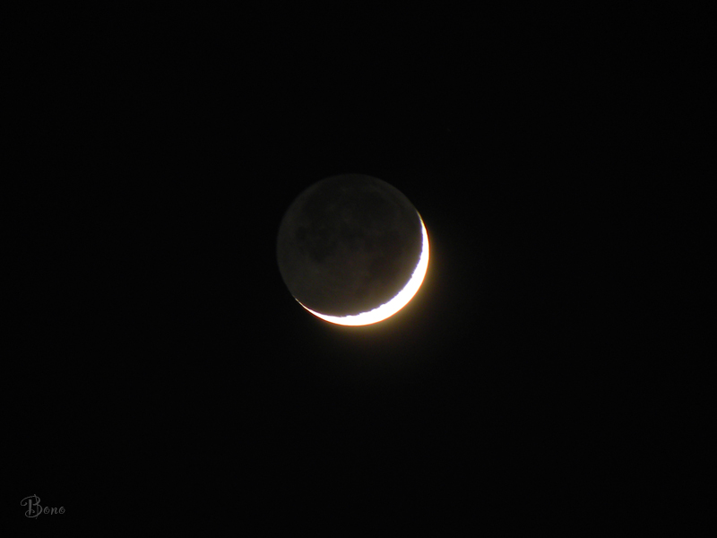 c-moon-2b.jpg