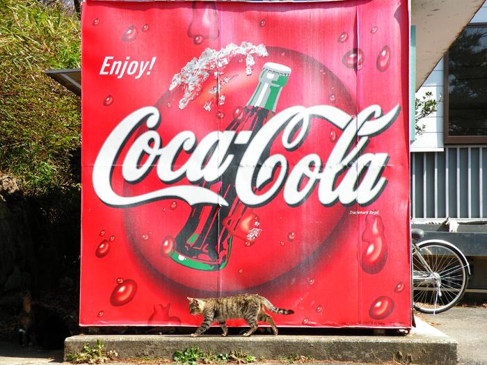 coca-cola-cat.jpg